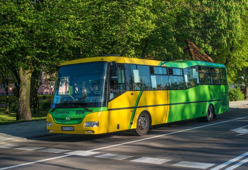 Conduite d'un bus urbain moderne à Elblag, Pologne image libre de droits