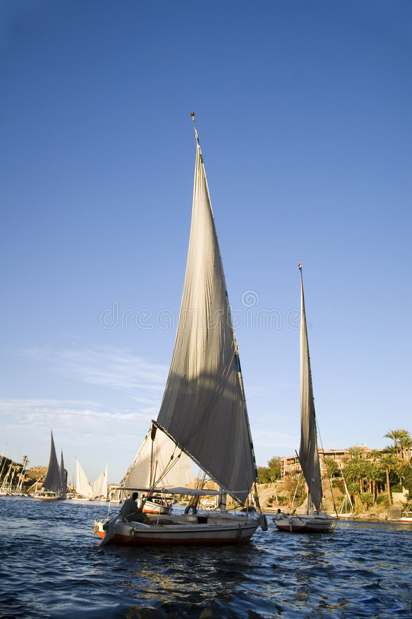 Conduite de bateau de Felucca à Aswan image stock