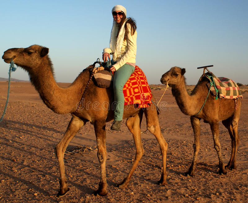 Conduite sur le chameau images stock