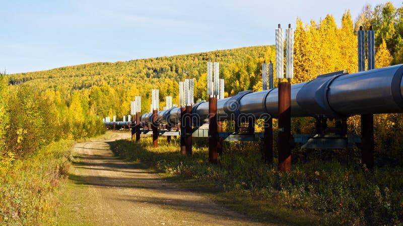 Conduttura dell'Trasporto-Alaska in autunno fotografia stock