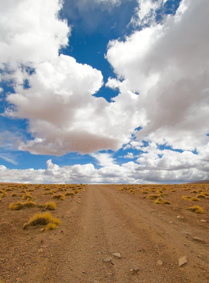 Conduzindo a estrada do deserto imagens de stock royalty free