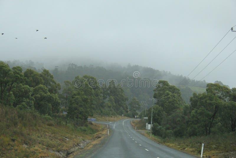 Conduzindo na curva que enrola Arthur Road, Tasmânia imagem de stock