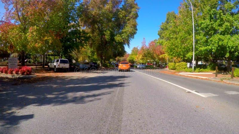 Conduzir ao longo da árvore bonita do outono alinhou ruas de Stirling, Sul da Austrália foto de stock royalty free