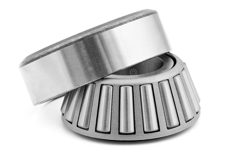 Cone bearing. stock photography