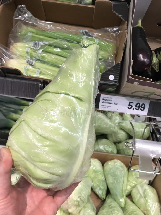Cone cabbage in Lidl store, Poland royalty free stock photo