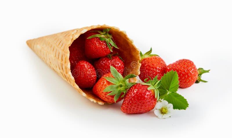 Cone de gelado da bolacha do cartucho com morangos maduras foto de stock royalty free