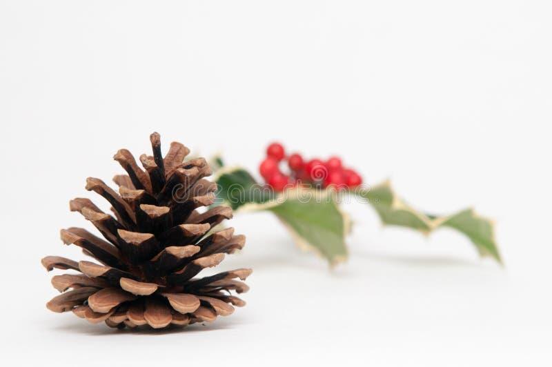Cone do pinho e fundo festivos do Natal do azevinho imagens de stock