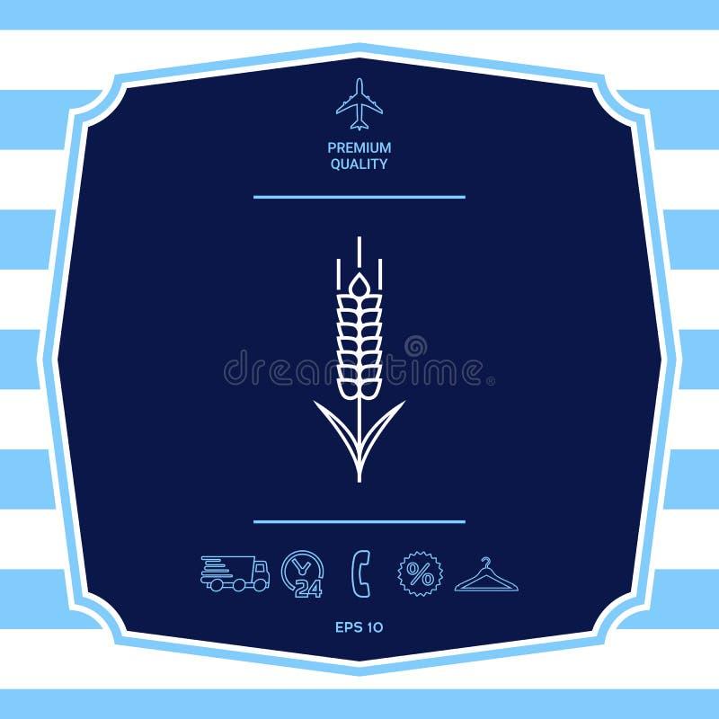 ?cone do spikelet do trigo ou do centeio Elementos gr?ficos para seu projeto ilustração royalty free