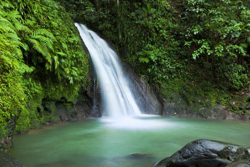 Conecta a cachoeira auxiliar dos Ecrevisses, Guadalupe imagens de stock