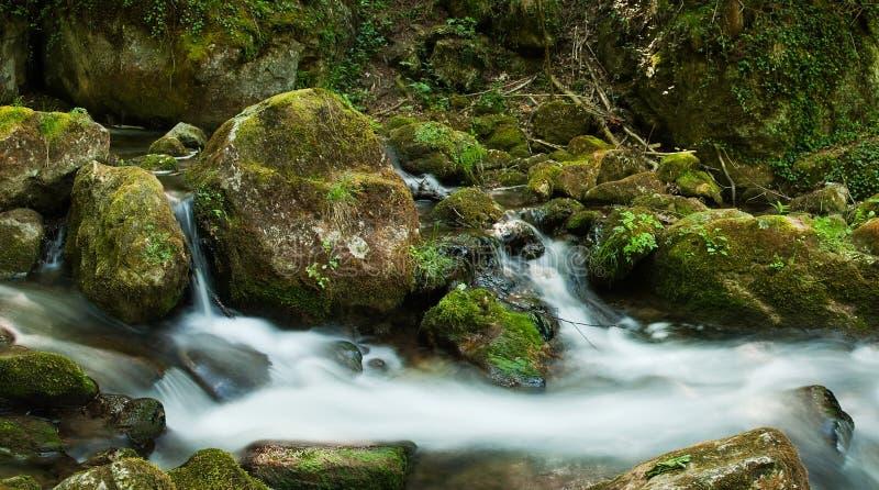 Conecte en cascada con las rocas cubiertas de musgo en bosque imágenes de archivo libres de regalías