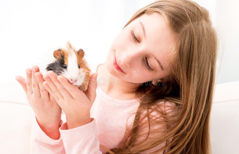 Conejillo de Indias encantador de la tenencia de la ni?a imágenes de archivo libres de regalías