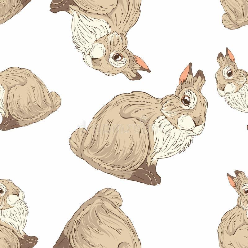 conejito stock de ilustración
