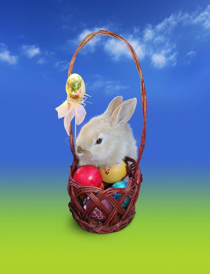 Conejito de pascua con la cesta de los huevos, cielo