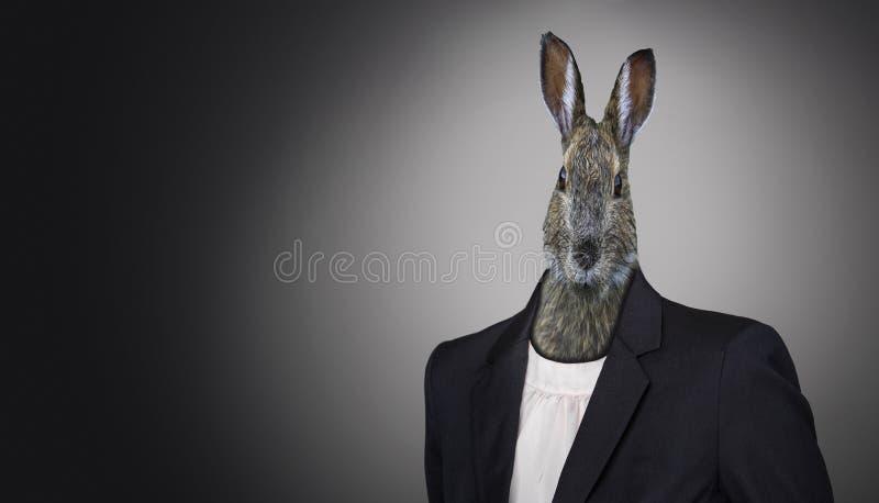 Conejito de pascua divertido que lleva un traje, concepto del día de fiesta de Pascua imágenes de archivo libres de regalías