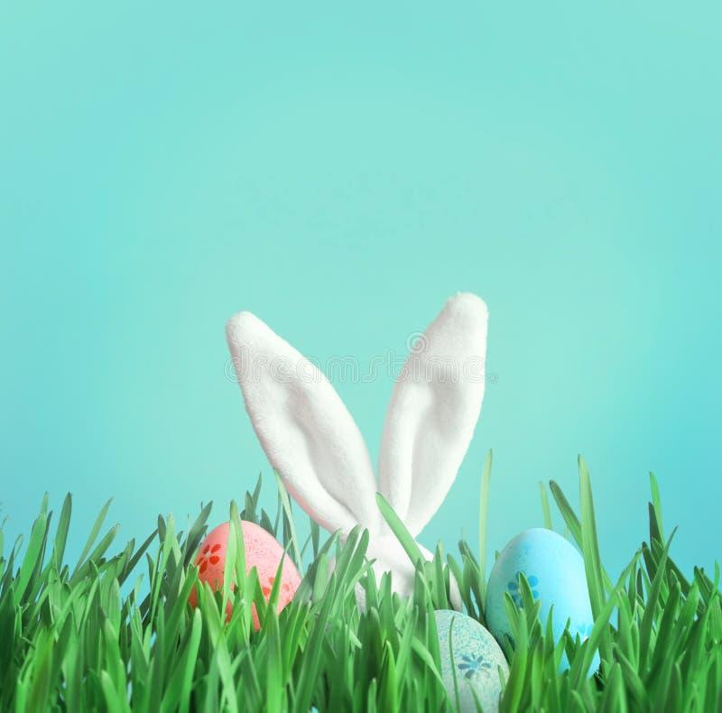 Conejito divertido de Pascua en hierba verde con los huevos de Pascua fotos de archivo libres de regalías