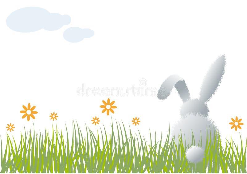 Conejito en hierba,   ilustración del vector
