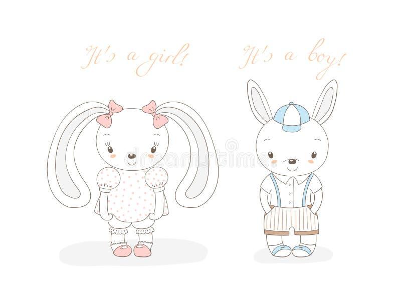 Conejitos muchacho y muchacha del bebé libre illustration