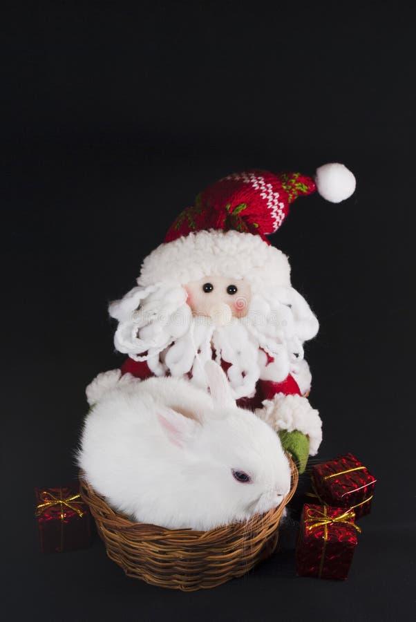 Conejo Del Blanco De La Navidad Imagen de archivo libre de regalías