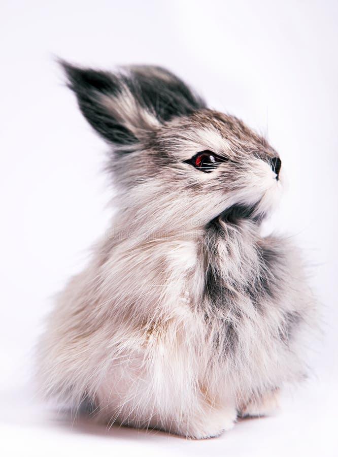 Conejo del juguete foto de archivo libre de regalías