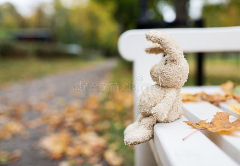 Conejo del juguete en banco en parque del otoño fotos de archivo libres de regalías