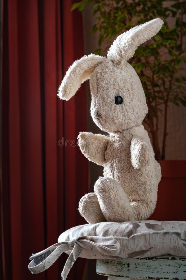 Conejo del juguete del vintage La liebre suave del juguete del viejo vintage se sienta en la silla blanca del vintage foto de archivo