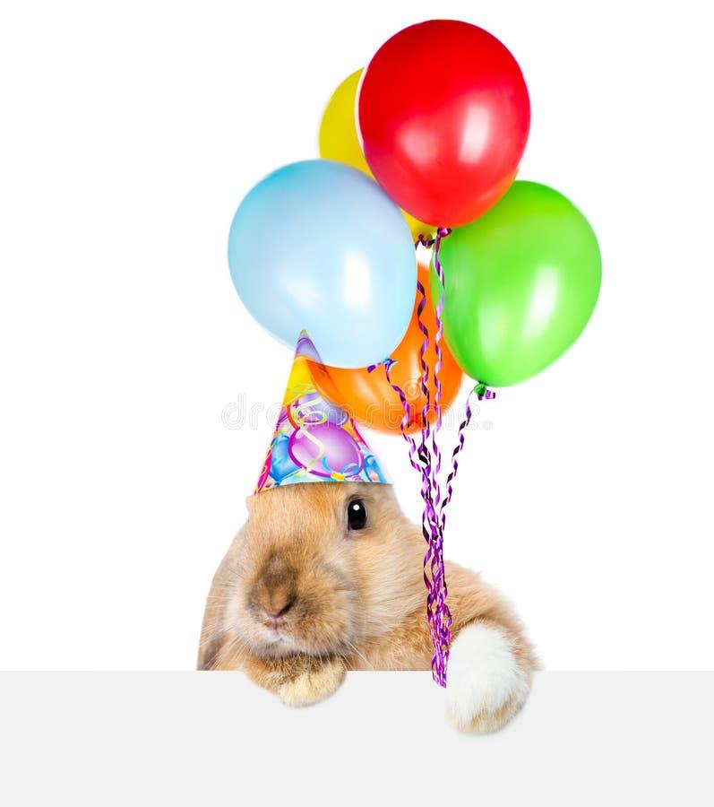 Conejo en el sombrero del cumpleaños que mira sobre un letrero Aislado en blanco fotografía de archivo