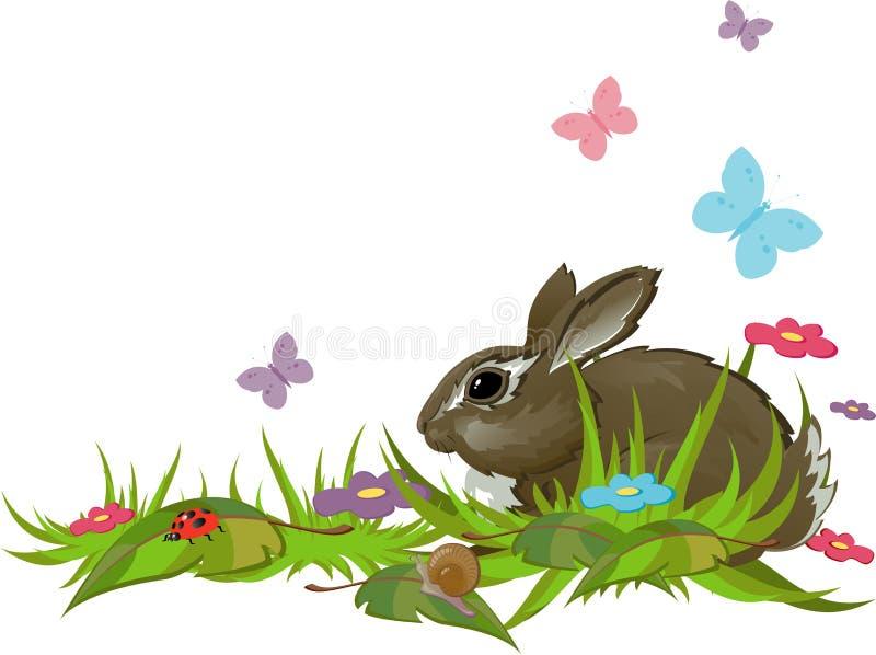 Conejo en hierba libre illustration