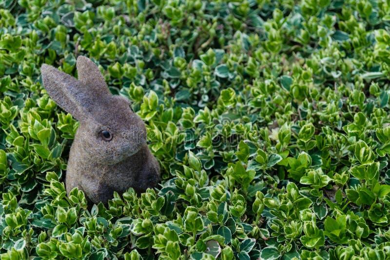 Conejo feliz de Pascua foto de archivo libre de regalías