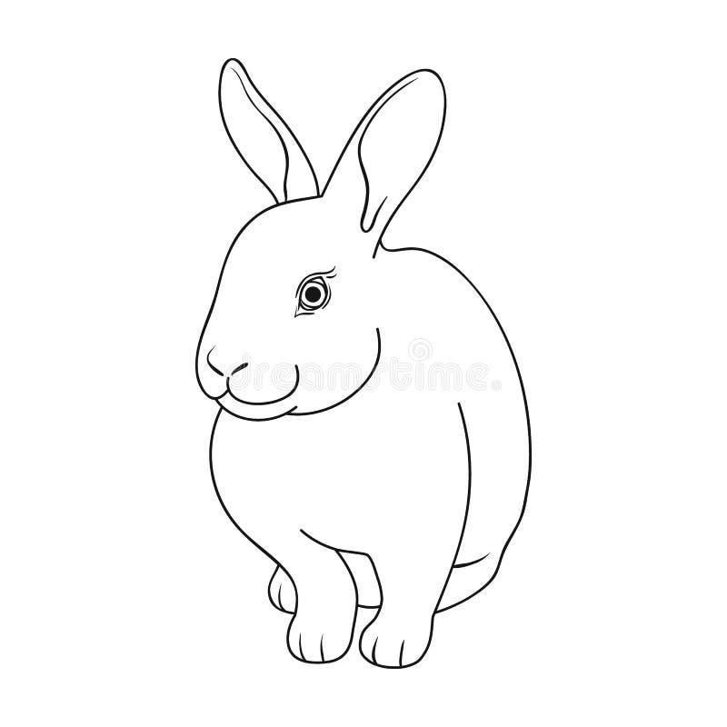 Conejo gris Los animales escogen el icono en web del ejemplo de la acción del símbolo del vector del estilo del esquema libre illustration