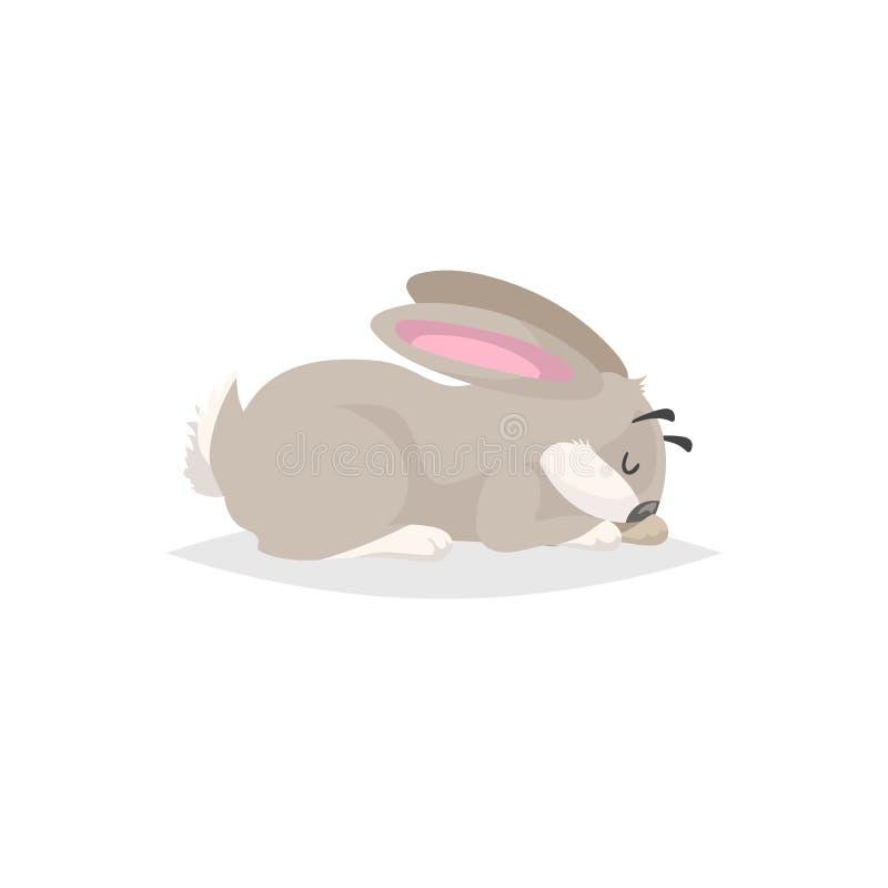 Conejo lindo de la historieta dormido Dibujo c?mico plano del animal del campo del estilo S?mbolo de la primavera de Pascua Ilust libre illustration