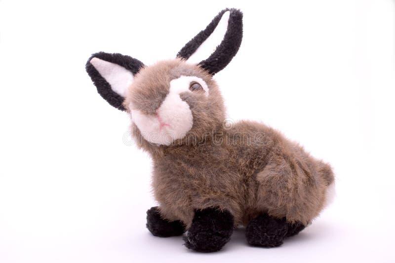 Conejo relleno del juguete imágenes de archivo libres de regalías