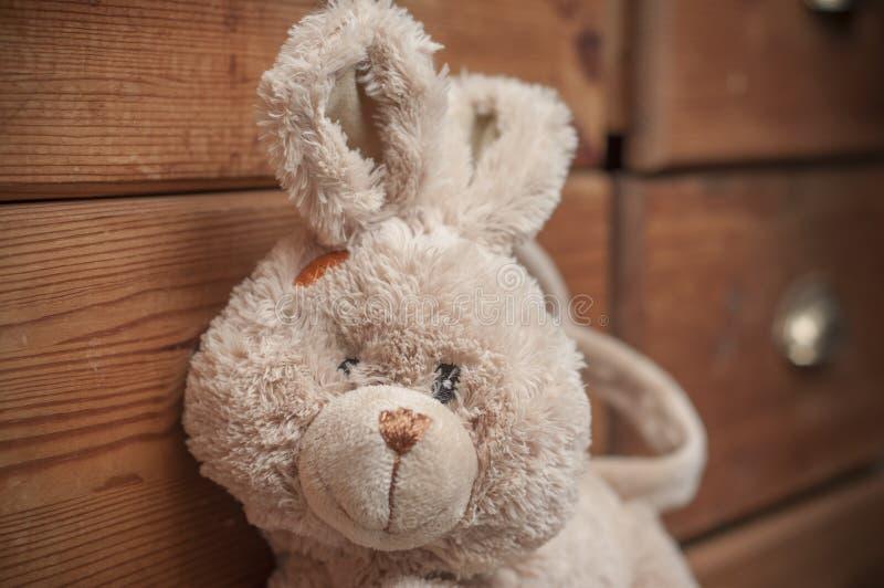 Conejo relleno en el pecho de madera del fondo de los cajones fotos de archivo