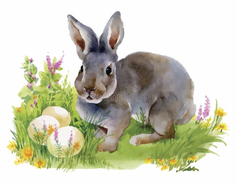 Conejos de la acuarela en el ejemplo del vector de la hierba verde stock de ilustración
