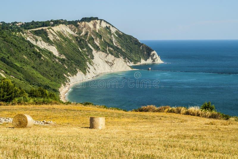 Download Conero - Cultivated coast stock image. Image of conero - 29089917