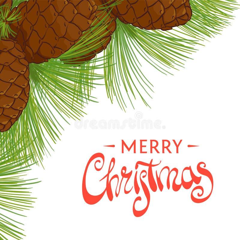 Cones do cedro do feriado ilustração stock