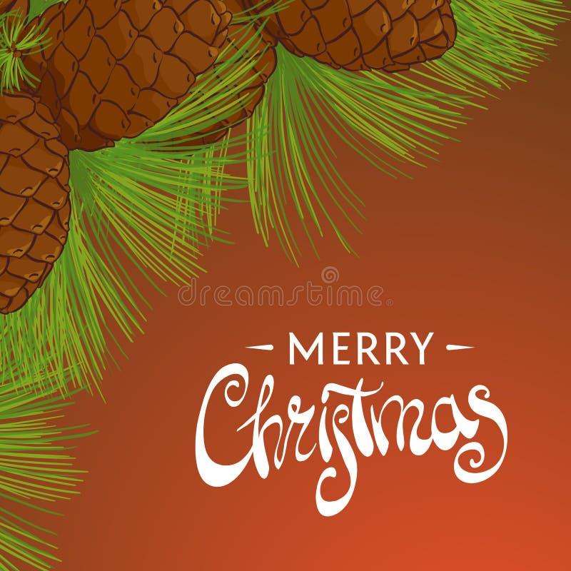 Cones do cedro do Natal ilustração do vetor