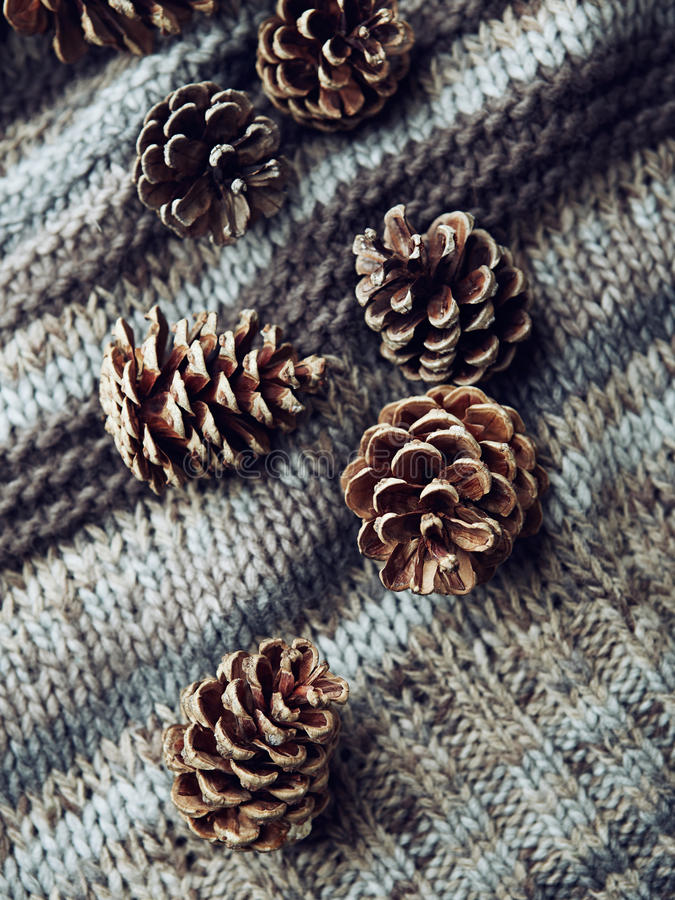 Cones do pinho em uma tela de lã fotografia de stock