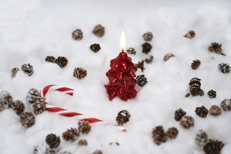 Cones in the snow. Macro photo of small decorative cones with some Christmas components stock photos