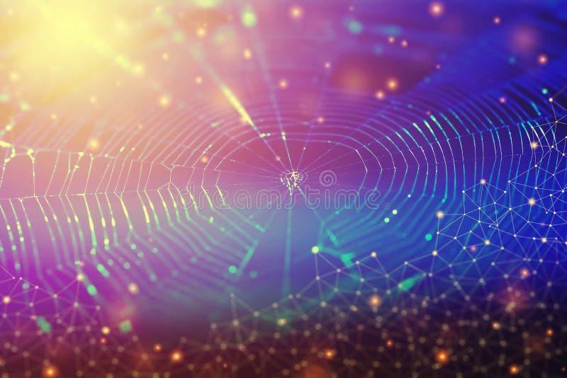 Conexão de rede e conceito do fundo da tecnologia Foto de s foto de stock royalty free