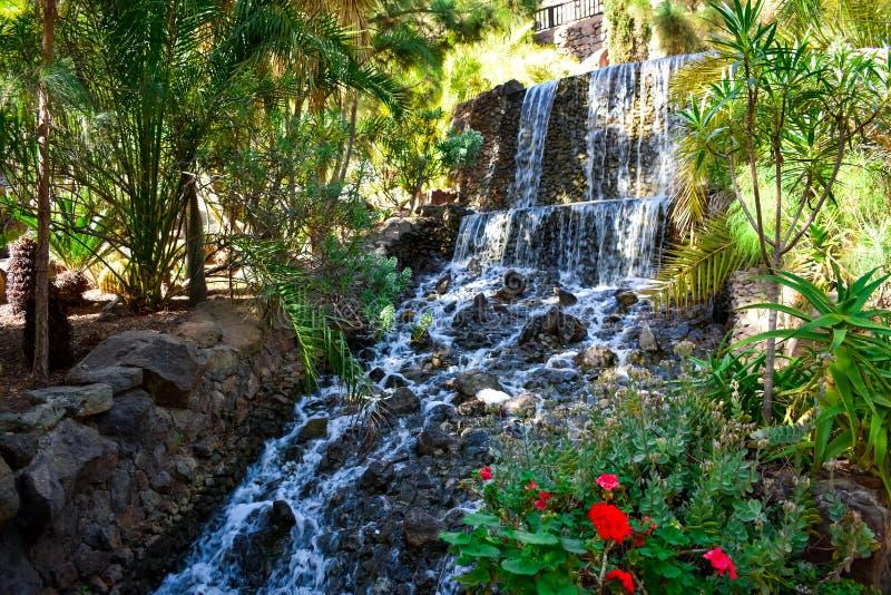 conexão em cascata das cachoeiras fotos de stock royalty free