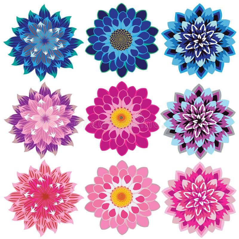 Conexão em cascata das pétalas da flor da dália ilustração royalty free