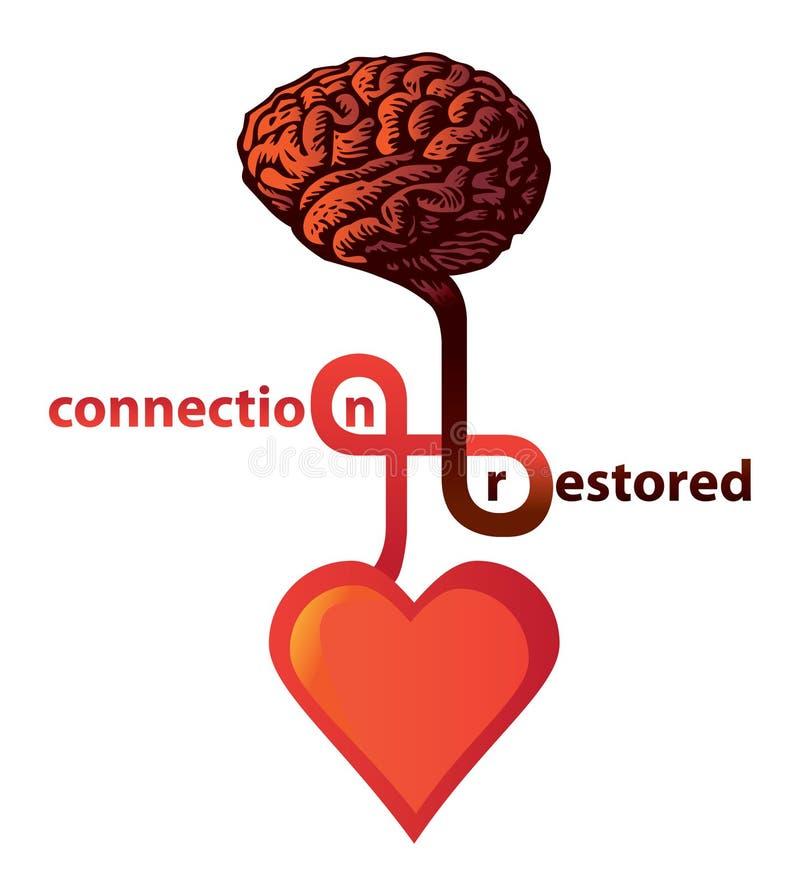 Conexão entre o coração e o cérebro fotos de stock
