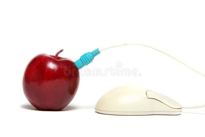 Conexión de cable roja de la manzana y del ratón imagen de archivo libre de regalías