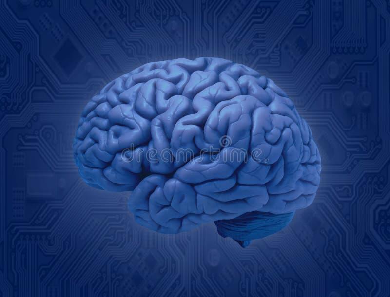 Conexión del cerebro y del microprocesador stock de ilustración