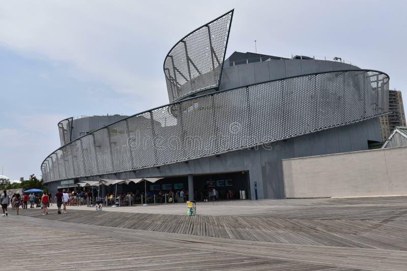 Coney Island New York da construção da exposição dos tubarões fotos de stock