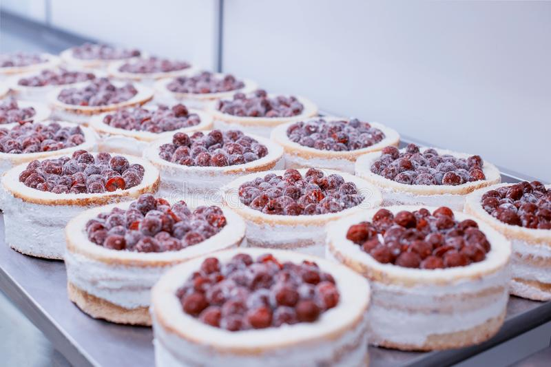 Confectionery production for the manufacture of sponge cakes with fresh cherry berries and cream, dessert, background. Confectionery production for the royalty free stock image