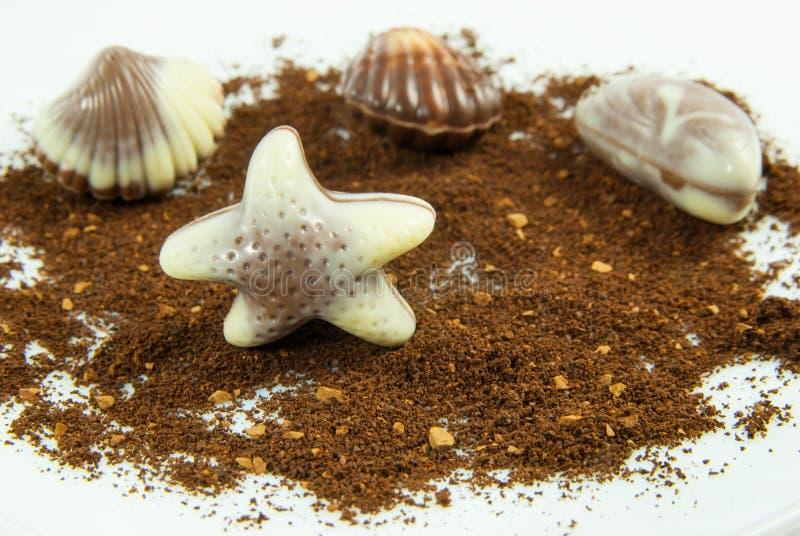 Confeito belga sob a forma da estrela do mar imagem de stock royalty free