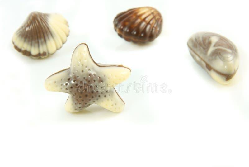 Confeito belga sob a forma da estrela do mar foto de stock