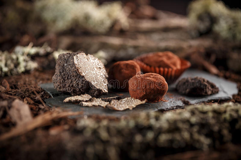 Confeitos finos do chocolate imagem de stock