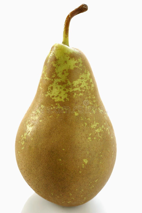 Conference pear stock photography